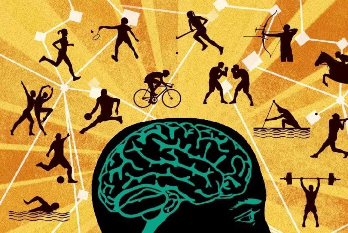 11 Universidades Para Estudiar Educación Física Y Deportes